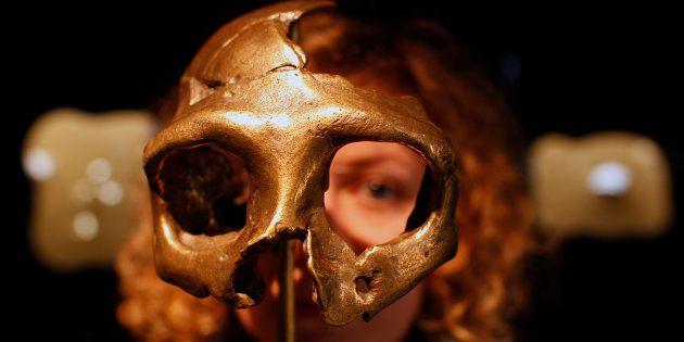 Una chica mira a través de una réplica de cráneo neandertal en un museo de