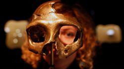 Los neandertales no eran sólo músculo: realizaban tareas de alta