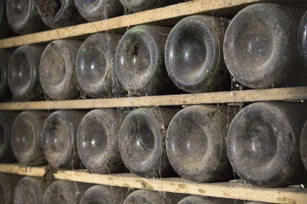 ¿Cuántos tipos de rioja
