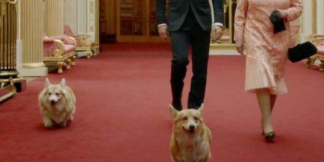 La reina Isabel II con sus perros junto a James