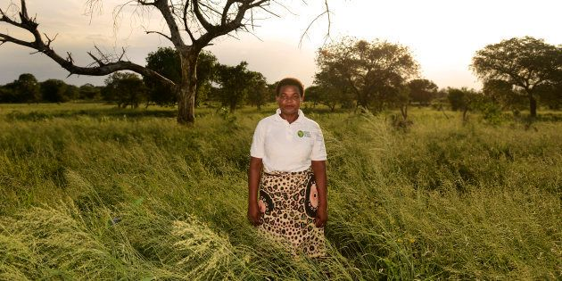 Rosa Mouzinho dedica su vida a rastrear la pista de la malaria en el sur de