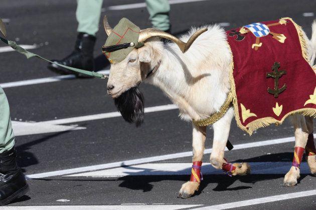 La cabra de la Legión, en un desfile del 12 de