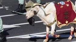 12 de octubre: Día de la Hispanidad... y de la