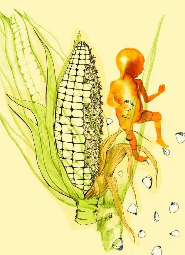 Día Mundial de la Alimentación, ¿Día Mundial del