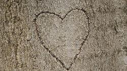 Graban un corazón con nombres en un yacimiento prehispánico de Gran