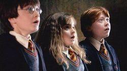 Los alumnos de un instituto arrasan en redes con su recreación de 'Harry