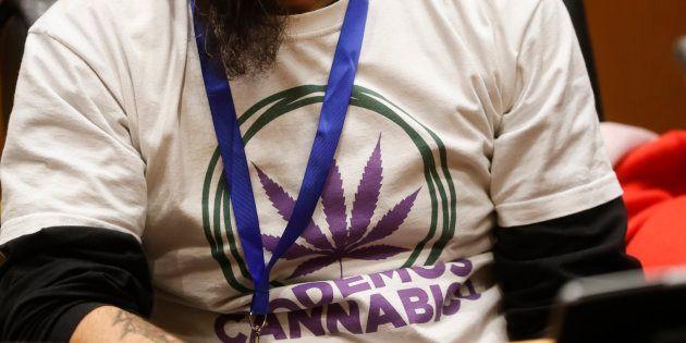 Pablo Iglesias propone legalizar el cannabis para tener