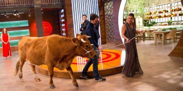 'MasterChef' cabrea a los fans al hablar de cómo descuartizar una vaca viva ante las