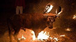 Las fiestas españolas que nos