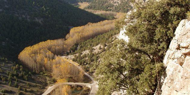 El Cañón del Río Lobos visto desde La
