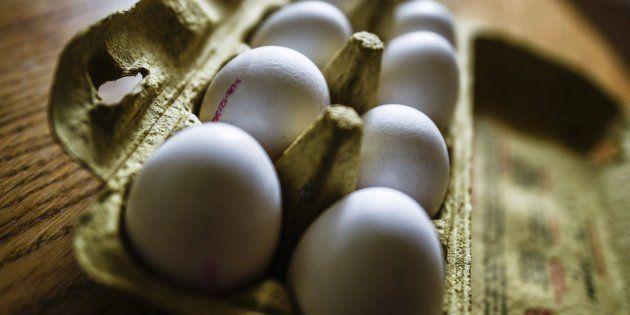 Dos sospechosos detenidos en Holanda por la crisis de los huevos