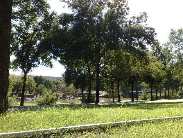 Agosto en la ciudad: menos coches, ruido y polución, y mucha naturaleza por