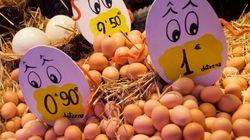La crisis de los huevos contaminados afecta ya a 16 países de Europa y a Hong