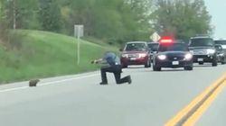 Un policía mata a sangre fría a una marmota que cortaba el tráfico en EE