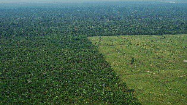 Vista aérea de la deforestación de la Amazonia brasileña. Septiembre de