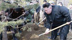 La nueva 'supuesta noticia' sobre Kim Jong-un triunfa en