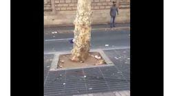 Atentado en Barcelona: cómo filtrar las imágenes más duras en las redes