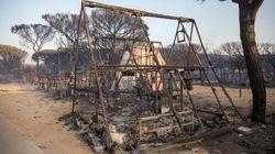 El incendio de Doñana se debió a un