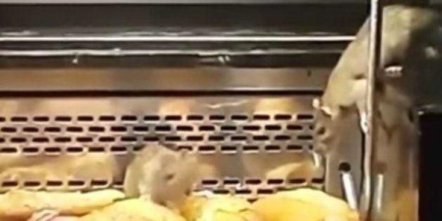 La panadería Granier atribuye a un error humano la presencia de ratas en su