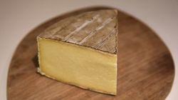 El mejor queso del mundo es