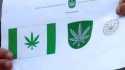Esta ciudad de 5.000 habitantes elige una hoja de marihuana para su
