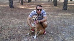 La Comunidad sacrificará por orden judicial al perro de la