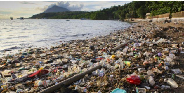 Limpieza, concienciación e investigación: así es el ambicioso proceso que quiere eliminar la basura de...