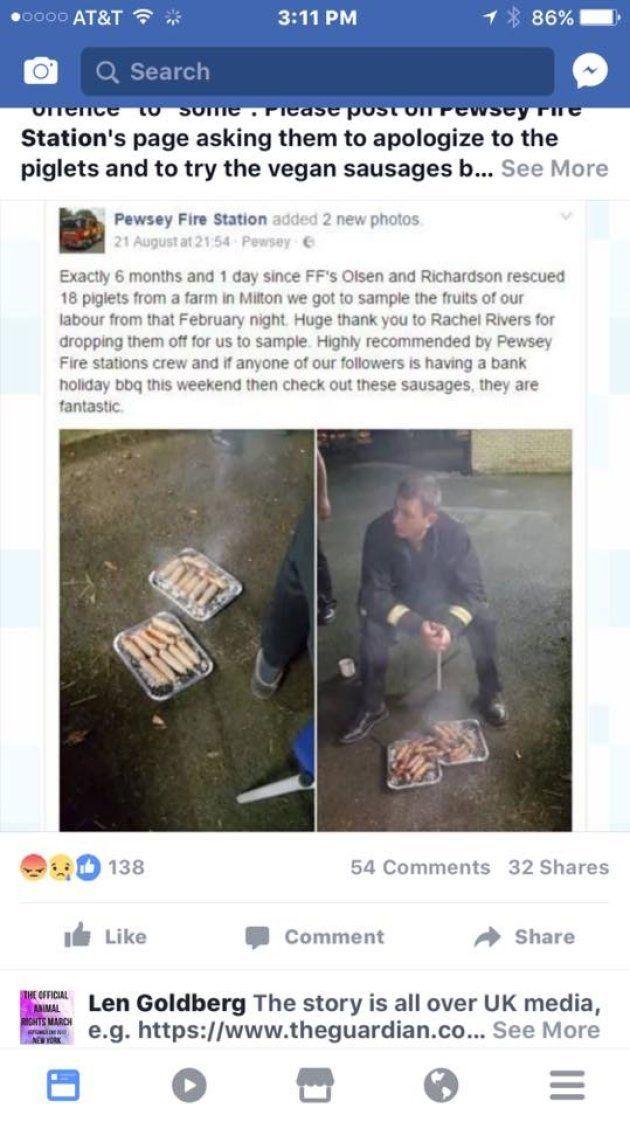 Unos cerdos rescatados de morir en un incendio terminaron hechos salchichas en una cena de los