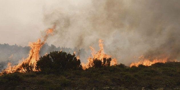 El incendio de La Cabrera ha arrasado ya 8.000 hectáreas y podría forzar a nuevos