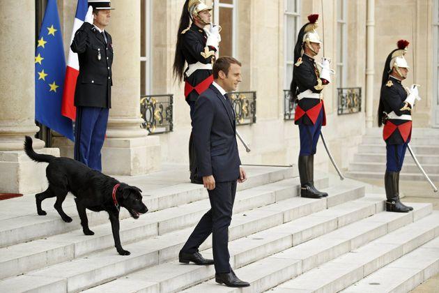 FC04 PAR�S (FRANCIA) 28/08/2017.- El presidente galo, Emmanuel Macron (d), y su perro Nemo (i), esperan...