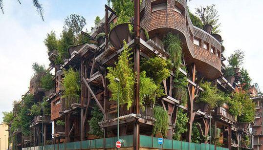 Una casa del árbol para adultos