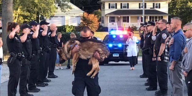 La emotiva despedida a un perro policía con cáncer de hígado en Estados Unidos
