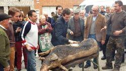 La foto de Pablo Casado que ha indignado a los