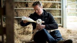 Cameron, la madre del cordero