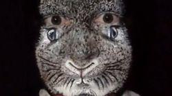 Esta mujer es capaz de transformarse en un conejo de Pascua sólo con maquillaje