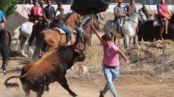 FOTOS: Un herido de gravedad en el Toro de la Vega de