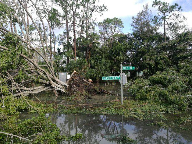 Emilio Sánchez Vicario, evacuado por el huracán Irma: