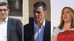 ENCUESTA: ¿A quién votarías en las primarias del