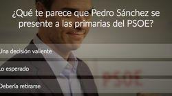 ¿Qué te parece que Pedro Sánchez se presente a las primarias?