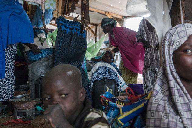 Un grupo de desplazados llega a la pequeña ciudad de Pulka. Algunos llevan años en Camerún, huyendo de...