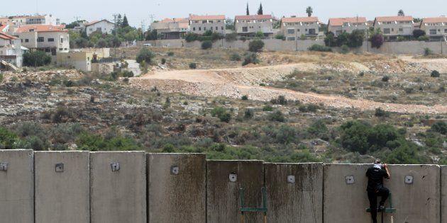 Un palestino se asoma por encima del muro de Cisjordania, a la altura de Nilin, con una colonia israelí...