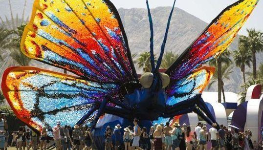Una mariposa gigante y otras fotos de la