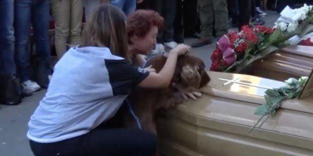 Un perro se despide de su dueño fallecido en el terremoto de Italia durante el