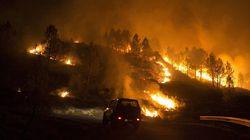 Cinco incendios calcinan más de 3.000 hectáreas en
