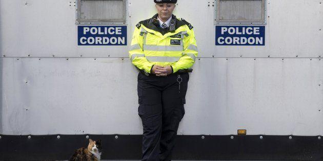 Una oficial de la policía británica y un gato permanecen junto a una zona acordonada en una vivienda...