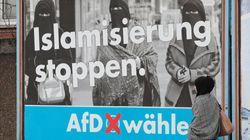 Qué es AfD: el partido de extrema derecha que preocupa a Alemania (y al