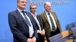 La ultraderecha accede al parlamento alemán: ¿Quiénes son Alternativa para