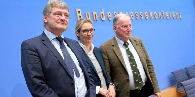 El presidente del partido ultraderechista Alternativa para Alemania (AfD), Joerg Meuthen; la candidata...