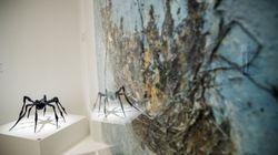 Alicia Koplowitz muestra por primera vez su colección de