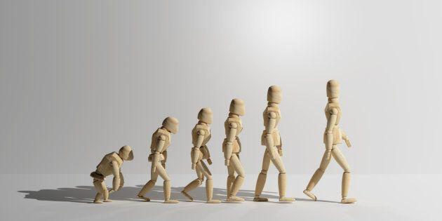 ¿Qué ejemplos de evolución conoces que están sucediendo frente a nuestros
